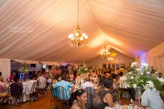 domain brahms wedding Wedding, Valentines Day Weddings, Weddings, Marriage, Chartreuse Wedding