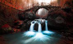 Photo The Bridge by Mirko Fikentscher on Amazing Photography, Nature Photography, Travel Photography, World Best Photographer, Water Under The Bridge, Nature Animals, Best Photographers, Great Pictures, Amazing Nature