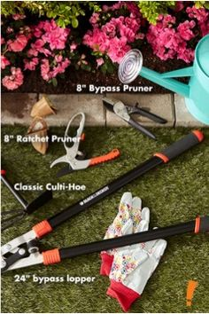 Spring is in the air on pinterest care bears easter for Gardening tools you need