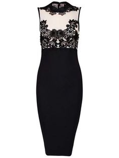 Celebrity Band Collar Decorative Lace Bodycon Dress