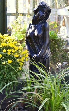 Videos asian garden statuary statuary damn