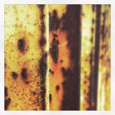 Rust8 #art #abstract #abstractart #wall #wallart #rust #thedailyrust #decay #berlin #modernart #nature #natureart #naturephotography#experiment #experimental #experimentalart by tmiodragon