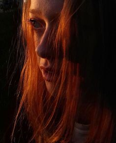 Amybeth Mcnulty, Gilbert And Anne, Anne White, Anne With An E, Lily Evans, Anne Shirley, Cuthbert, Kindred Spirits, Adventure Is Out There