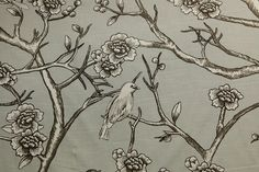 fabricwarehouse.com - Robert Allen VINTAGE BLOSSO DOVE  Drapery Fabric By The Yard, $14.98 (http://fabricwarehouse.com/drapery-fabrics/drapery-on-the-roll/robert-allen-vintage-blosso-dove-drapery-fabric-by-the-yard/)