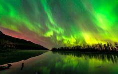 The aurora borealis illuminates the Alaskan night sky in this photo captured by  Carl Johnson