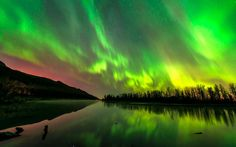 The aurora borealis illuminates the Alaskan night sky in this photo captured by  Carl Johnson