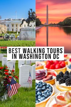 Planning a visit and looking for the BEST walking tours of Washington DC? This comprehensive list covers a bevy of interests to accomodate everyone. Usa Travel Guide, Travel Usa, Travel Guides, Travel Advice, Washington Dc Tours, Utah, Grand Canyon, Reisen In Die Usa, Las Vegas
