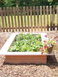 Raised Garden Box - love the bench all around