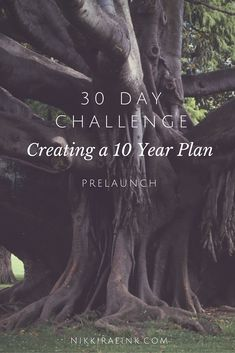 If you don't have a 10 year plan, you need one. This 30 day challenge will help you create a 10 year plan that will bust your butt.