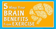 Just 20 minutes of strength training can boost brain function and enhance long-term memory by about 10 percent. http://fitness.mercola.com/sites/fitness/archive/2015/11/27/strength-training-brain-health.aspx