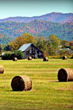 Hay field ...looks just like our old place
