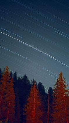 Night Wood Mountain Star Sky Nature #iPhone #5s #wallpaper