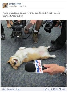 He is good with the media, but will no one stop and give a belly rub? Sutter Brown Is A Force In California Politics