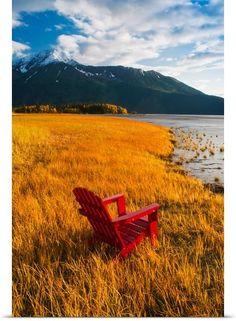 fall, Turnagain Arm,  Chugach National Forest, Alaska