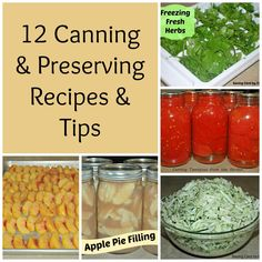 12 Canning & Preserving Recipes & Tips