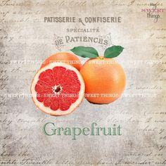 """Old Script """"Grapefruit""""Vintage Digital Collage Sheet with Vintagetexture paper,Grapefruit,Old Script, digital stamps, Frenchlettering, flourishes —————————————————————"""