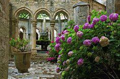 Abbaye de Valmagne, Languedoc-Roussillon, France