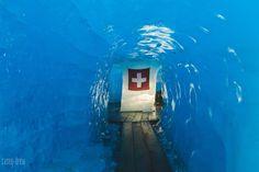 Visit the post for more. Switzerland, Explore, Exploring