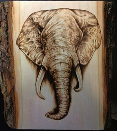 elephant wood burning