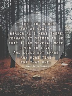 I left the woods for as good a reason as i went there. Perhaps it seemed to me that I had several more lives to live and could not spend any more time for that one. Henry David Thoreau, Movie Lines, Friedrich Nietzsche, Discovery, Words, Quotes, Inspire, Life, Outdoor