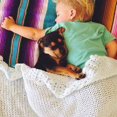 Toddler naps with his 2-month-old puppy every day [15 pictures] | 22 Words