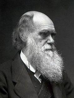Charles Darwin (Biologist)