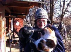 Gatti, è a Bosco di Scandiano (Reggio Emilia) il piccolo paradiso dei gatti