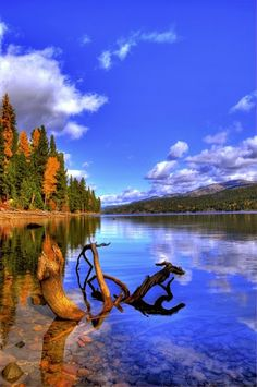 Sparkling Payette Lake at McCall, USA
