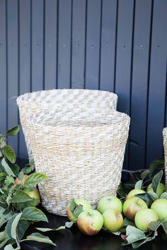 Körbe Laundry Basket, Wicker, Organization, Inspiration, Trends, Home Decor, Nice Asses, Getting Organized, Biblical Inspiration