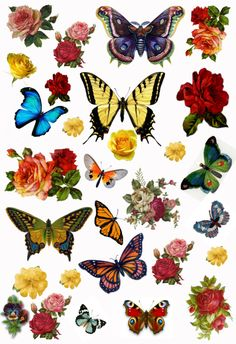 Vintage Butterflies and Flowers Collage Sheet