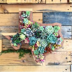 This adorable Hand made Texas plantermakes a beautiful gift for friends andloved ones. Perfect for patio or kitchen, Ifyou need the perfect gift this is it!!