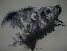 Roaring Bear.  Charcoal and pastel on paper.