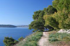 The pine cladded Bisti, where one can enjoy a leisurely walk, or swim.