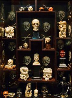 Skulls: ~ Morbid Anatomy: The Wunderkammer Olbricht, Curated by Kunstkammer Georg Laue, Me Collectors Room, Berlin. Memento Mori, Curiosity Cabinet, Horror, Cabinet Of Curiosities, Gothic Home Decor, Gothic House, Skull And Bones, Pics Art, Skull Art