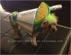 Material used:  Silver duct tape sheets, medium e-collar, empty paper towel roll, tie dye felt, Fiesta ribbon, green, yellow, and silver felt, flat ...