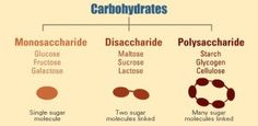 """When a carbohydrate is """"simple"""" it refers to mono and disaccharides. """"Complex"""" carbs on the other hand are polysaccharides"""