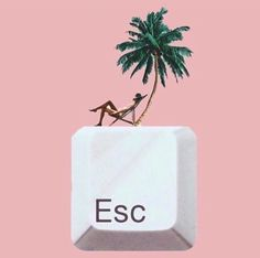 Escape with us. With each bite, brings you to a tropical place. 🌺 by DUDE Marie Claire, Editorial Photography, Fashion Photography, Photography Magazine, Ceremonial Grade Matcha, Girls Are Awesome, Music Is My Escape, Girls Club, Happy Weekend