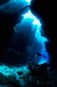 Scuba divers can explore underwater caves around the island Cthulhu, Water Photography, Amazing Photography, Diving School, Underwater Caves, Diving Course, Koh Tao, Great Barrier Reef, South Pacific