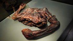 Ireland, bog body, Old Croghan Man