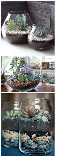 Beautiful DIY Succulent Terrariums - Super easy ! Just layer succulent potting soil, rocks, and cactus. Love this !                                                                                                                                                      More