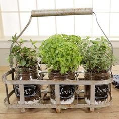 Having homegrown herbs in your kitchen is always great, but it's even better when your garden is easily transportable to allow for growing and cooking with ease! Repurpose jars and an old milk carrier into your own indoor herb garden, then add cute chalk labels! This rustic, vintage-style DIY project is quick and easy to make, and it will be pretty and useful in your kitchen.