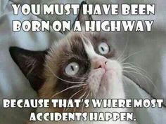 Super Funny Love Memes For Him Humor Grumpy Cat Ideas Grumpy Cat Quotes, Gato Grumpy, Grump Cat, Funny Grumpy Cat Memes, Cat Jokes, Funny Animal Jokes, Cute Funny Animals, Funny Cats, Funny Memes