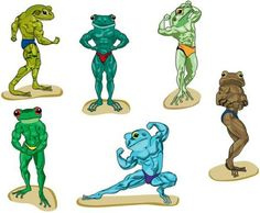 Muscle frogs