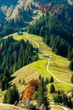 #Bavaria, #Germany // Бавария, Германия