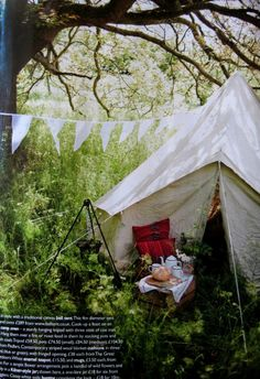 tent in the long grass