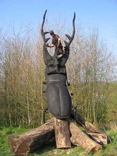 Redwood Garden Or Yard / Outside and Outdoor sculpture by artist AD Treepirate titled: 'Stag Beetle (Giant Outsize Carved Wood Insect carving/statue/sculpture)'