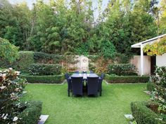 Landscaped garden design using grass with outdoor dining & hedging - Gardens photo 230276
