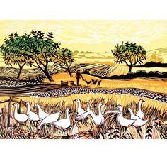 Rob Barnes, Geese