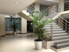 ExecuFlora - 6 Benefits of Interior Plants