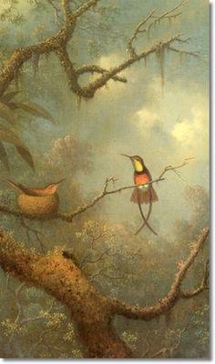 Martin Johnson Heade - Hummingbirds
